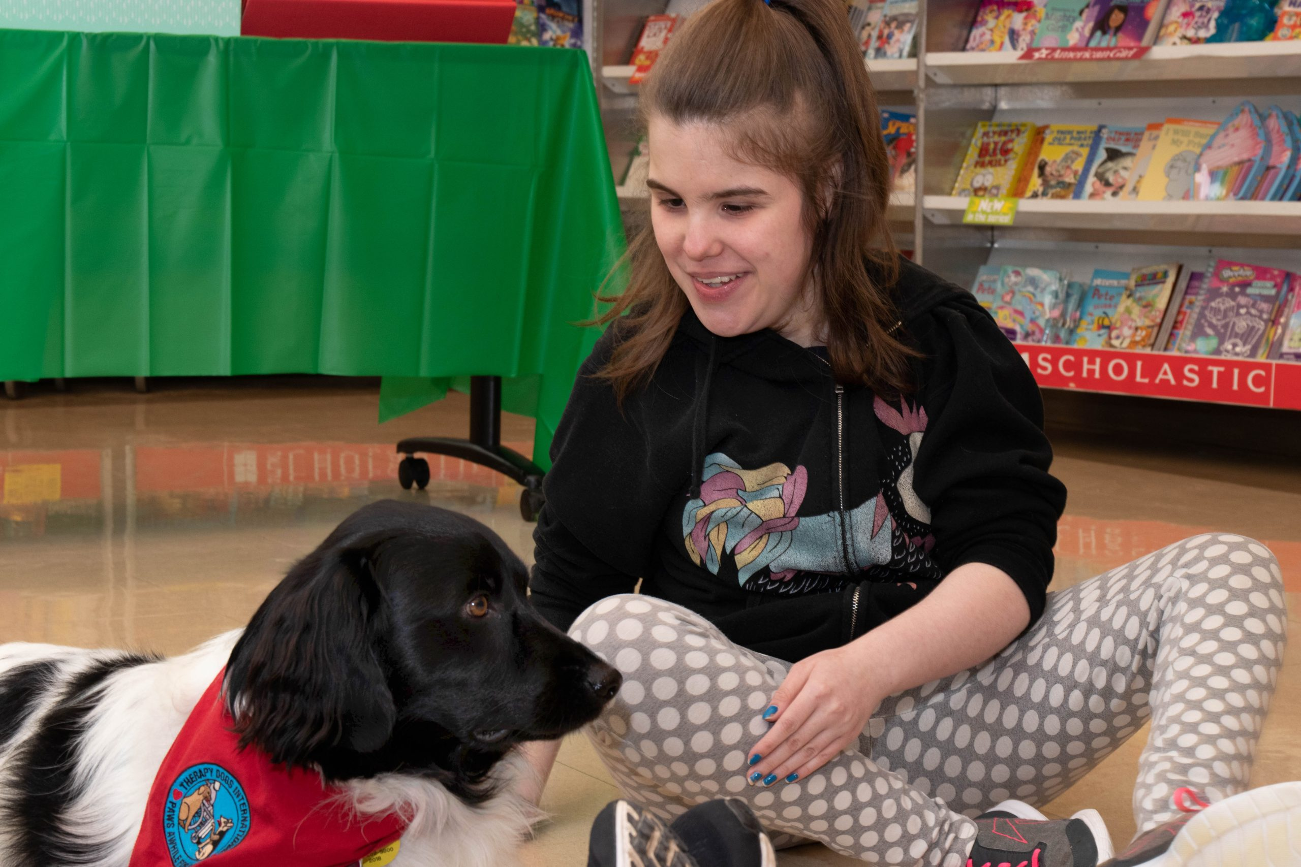 2018 TherapyDog School 86 scaled - Virtual Tour of The School at Springbrook