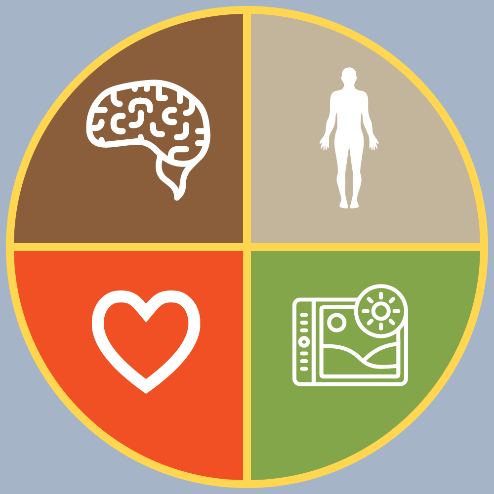 Whole Wellness Diagram