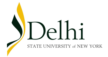 DelhiLogo - Springbrook Scholars