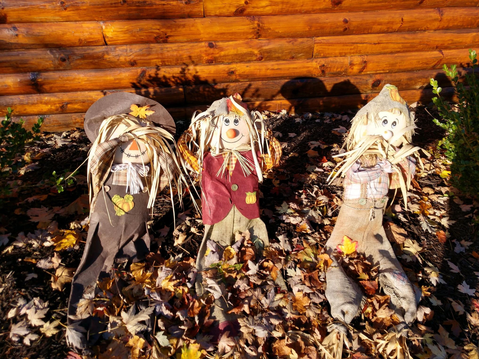 Earlville - 2nd Annual Scarecrow Contest