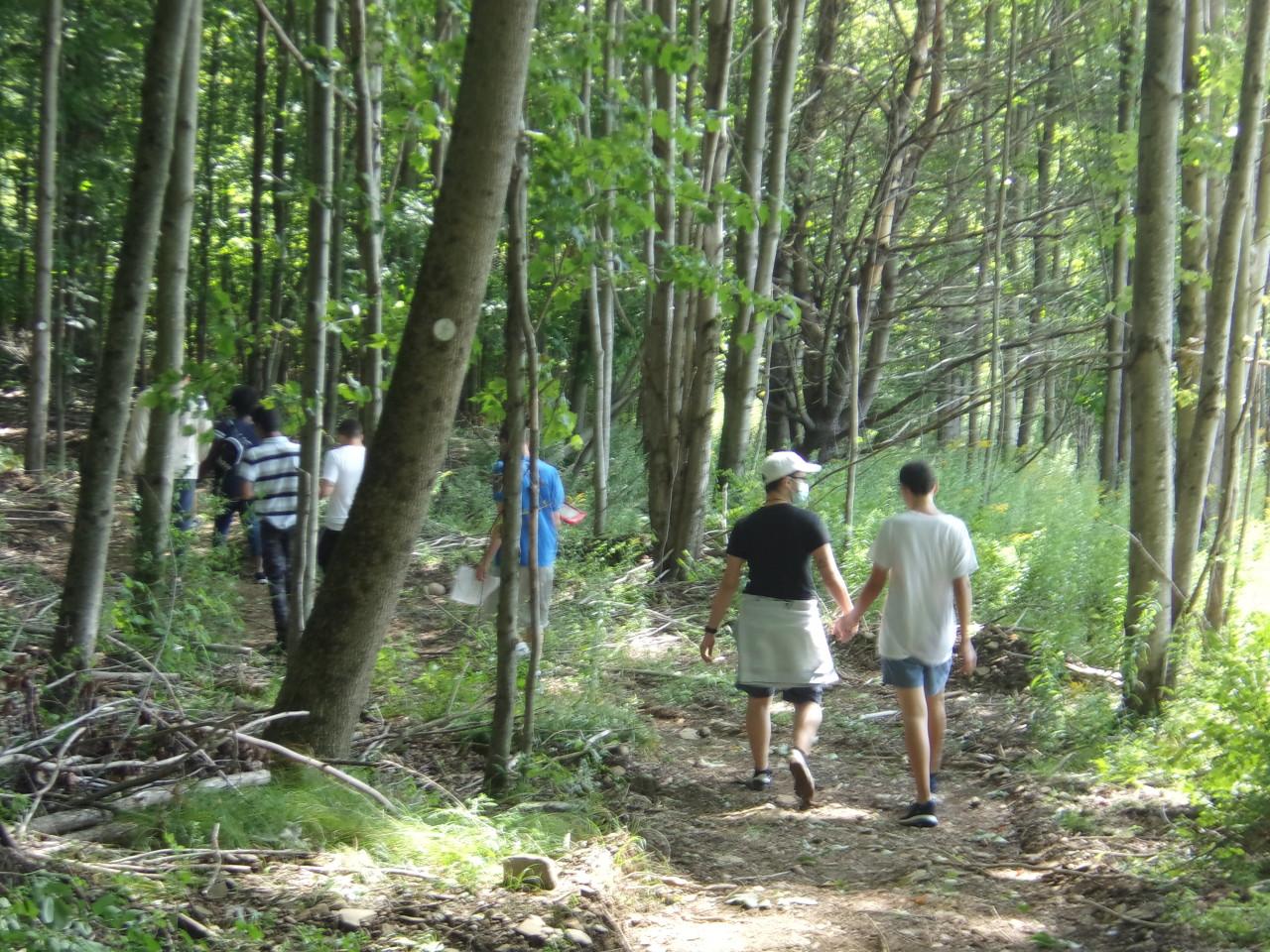 MainCampusTrail5 - Hitting the Trail - Take a Look Tuesday